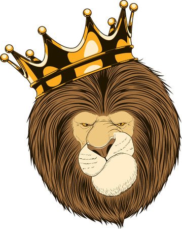 stern: Vector illustration lion stern king of beasts on a white background Illustration