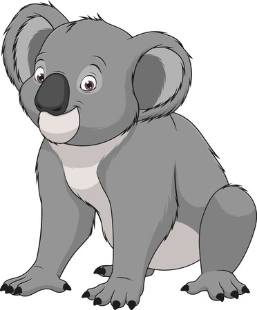 illustration adult funny koala smiling on a white background Illustration