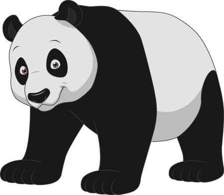 Ilustración vectorial panda adulto divertido y sonriente sobre un fondo blanco
