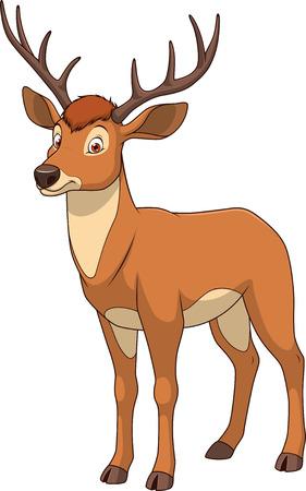 Vector illustration adult funny deer smiling on a white background Illustration