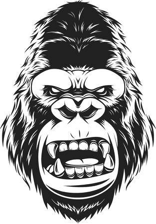 illustration ferocious gorilla head on a white background