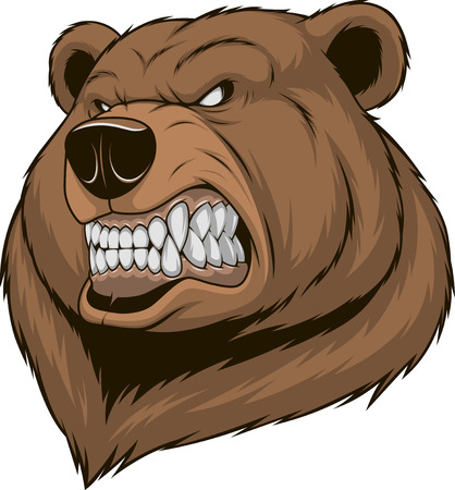 Vector illustration, a ferocious bear head on a white background