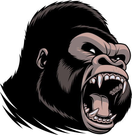 Vector illustration of head of wild ferocious gorilla screaming, showing fangs