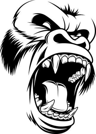 Abbildung wilden Gorilla Kopf auf einem weißen Hintergrund Standard-Bild - 62771725