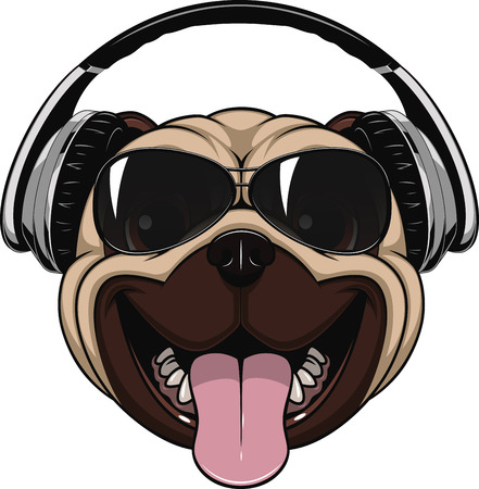 Vector illustration funny laughing pug wearing sunglasses and headphones.