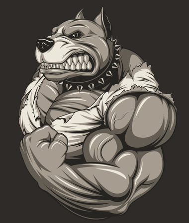 ferocious: illustration strong ferocious pit bull, shows a large biceps Illustration