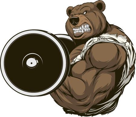 Vector illustration, strong ferocious bear raises the bar Vectores