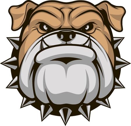 illustration head ferocious bulldog mascot, on a white background