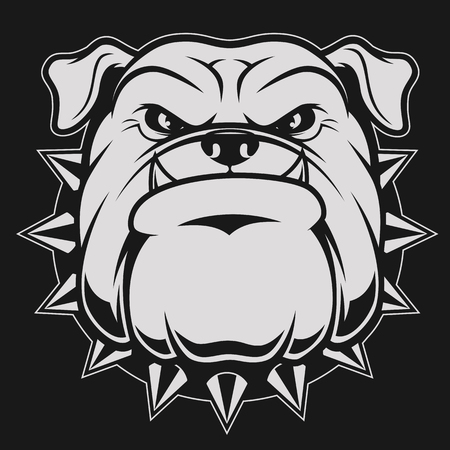 Vector illustration head ferocious bulldog mascot, on a black background