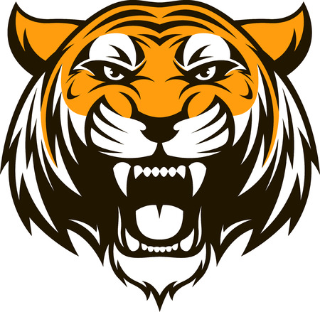 Vector illustration head ferocious tiger on a white background 일러스트