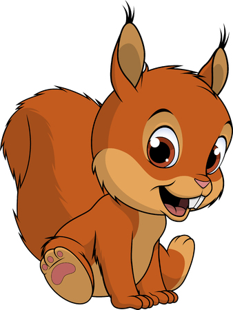 Cute squirrel on white background, vector illustration