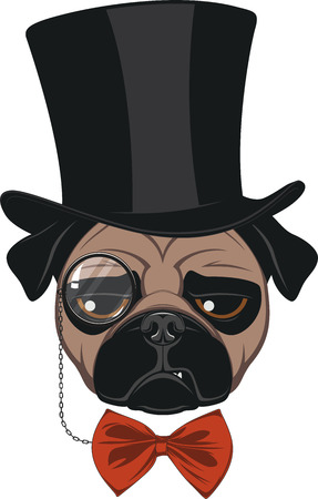 Vector illustration of funny pug wearing a hat, on a white background Illustration
