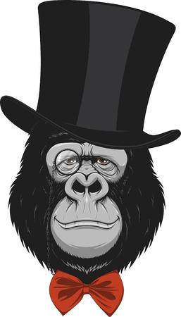 gazing: Vector illustration of funny gorilla with a hat on a white background