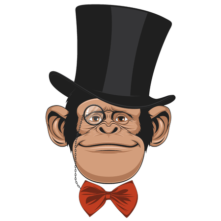 gazing: Vector illustration of funny chimpanzee with a hat on a white background