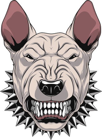 Vector illustration Angry bullterrier mascot head, on a white background Illustration