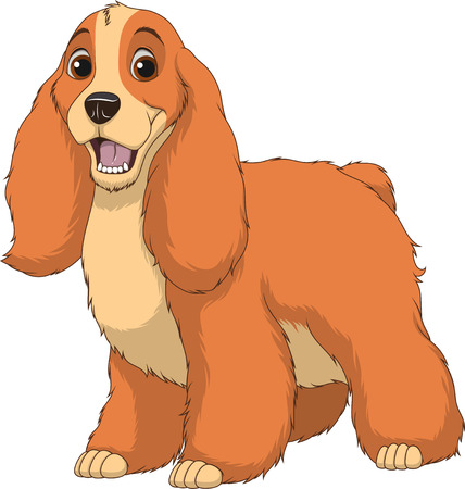 Vector illustration, funny purebred dog, Cocker Spaniel, on a white background