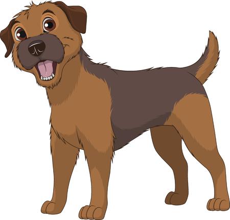 Vector illustratie, grappige rasechte hond, Border Terrier, op een witte achtergrond Stock Illustratie