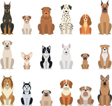 Vektor-Illustration, Reihe von lustigen reinrassigen Hunden, auf einem weißen Hintergrund Standard-Bild - 74291378