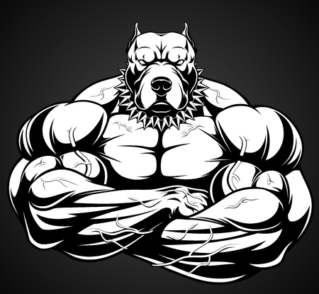 Vector illustration of a strong  pitbull with big biceps, bodybuilder 版權商用圖片 - 74825144