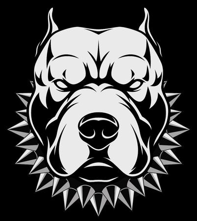 Vector illustratie Boze pitbull mascotte hoofd, op een witte achtergrond