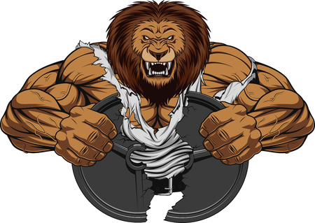 Vector illustration of a fierce strong lion bodybuilder breaks iron, over white background Иллюстрация