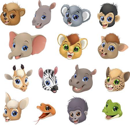 coldblooded: Vector illustration set of funny exotic animals, heads. Illustration