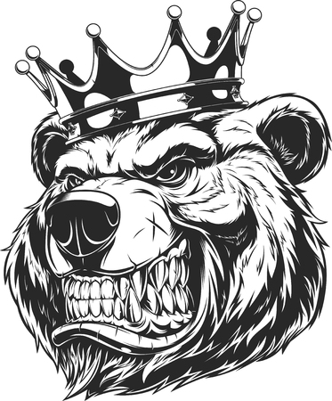Vector illustration of a furious bear in the crown, bear of the king. Çizim