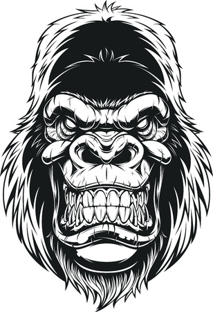 Vector illustration, ferocious gorilla head on white background