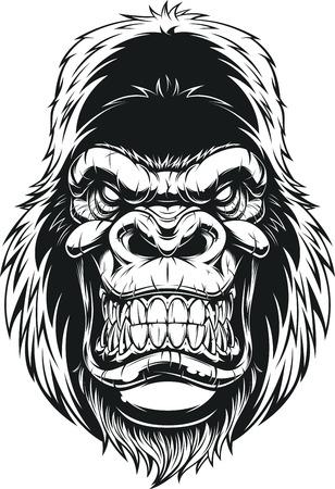 Vector illustration, ferocious gorilla head on white background 免版税图像 - 80793288
