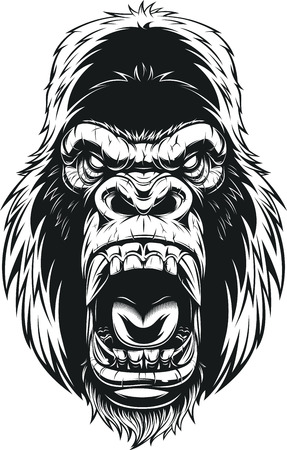 Vector illustration, ferocious gorilla head on background