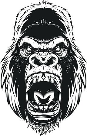 Vector illustration, ferocious gorilla head on background