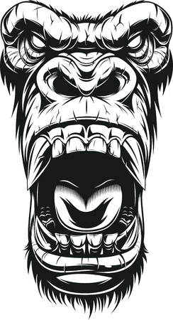 Vector illustration, ferocious gorilla head, on white background, sketch