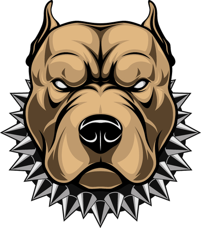 Vector illustration of a head of a spiteful pit bull