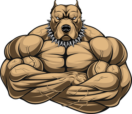 Vector illustration of a strong dog with muscles, bodybuilder Stock Illustratie