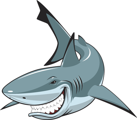 Toothy smiling white shark swims.