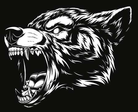 Ferocious wolf head illustration. Çizim