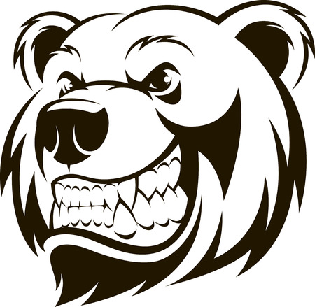 Vector illustration of a grizzly bears head, on a white background. Иллюстрация