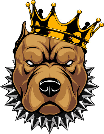 Vector illustration of a pit bull dog head in a golden crown, king, on a white background. 일러스트