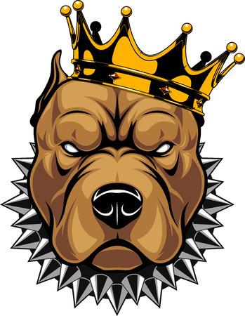 흰색 배경에 왕관, 왕, 핏불 강아지 머리의 벡터 일러스트 레이 션. 스톡 콘텐츠 - 94679941