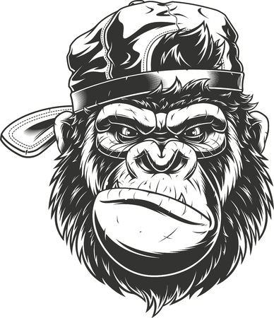 Vector illustration, severe gorilla in a baseball cap, head isolated, on a white background  Illustration