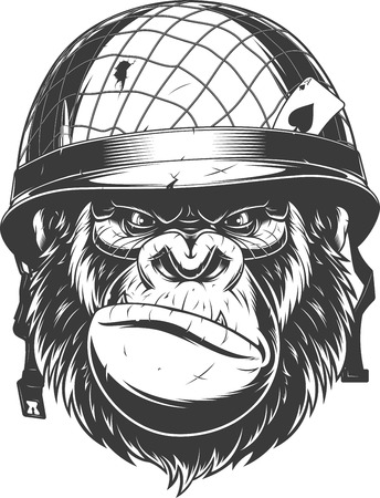 Vector illustration, fierce gorilla wearing military helmet, soldier of fortune, on white background