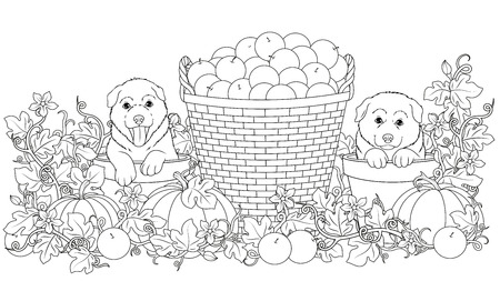 Vector illustration coloring book, funny puppies sit in flower pots, on the background with pumpkins and a basket of apples
