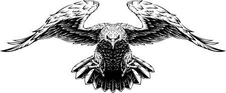 illustration, a large eagle opened its wings in flight