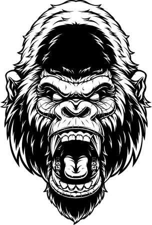 illustration, ferocious gorilla's head screaming, black contour on white background. Illustration