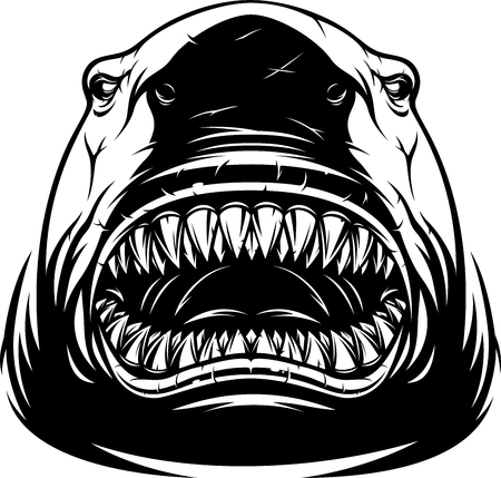 Vector illustration, white ferocious shark with toothy maw, on a white background, outline sketch