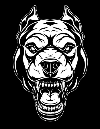 the head of a ferocious pit bull grins, on a black background