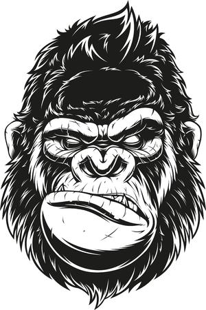 ferocious gorilla head, on a black background. Illustration