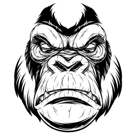 Vector illustration, ferocious gorilla head, on a black background. Ilustração