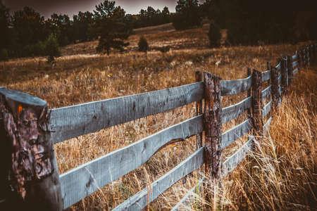 houten hek op gras onder zonnig