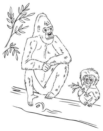 primacy: hand drawing on white background family gorilla sitting on a tree branch